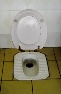 Den første generation af europæiske pedal-toiletter kan bruges såvel siddende som stående.